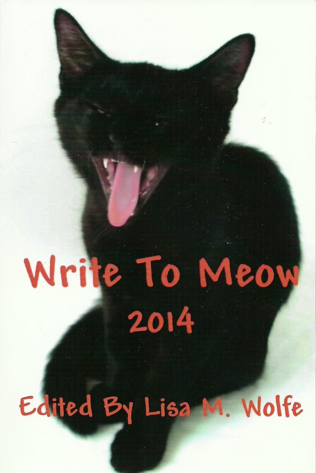 Princeton university essay prompt 2013